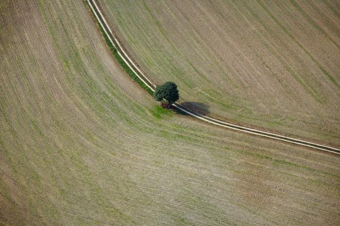 Bilger_Florian_09_Earth