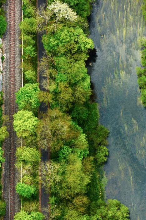 Eisenbahn-im-Donautal.jpg.p Kopie